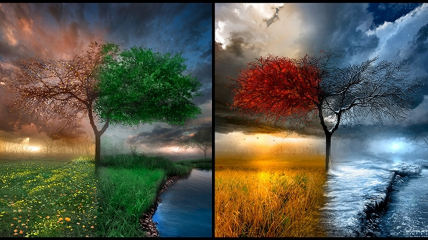 landscapes winter autumn summer spring season wallpaper 655015 wallbase 1920x1080 voltagebd Choice Image