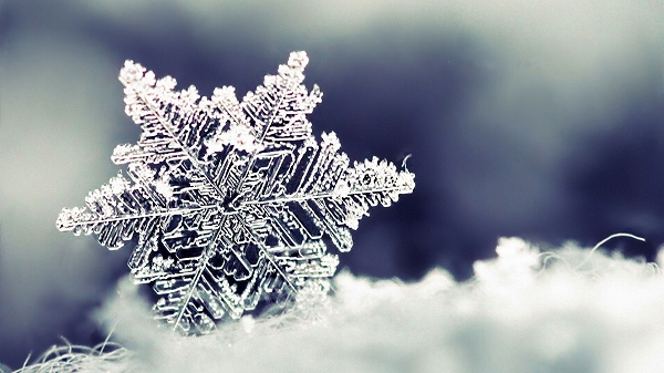 冬の壁紙はっとする美しさ